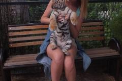 Фото с львятами и тигрятами