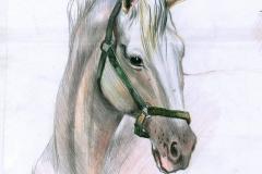 dina-leonova-33